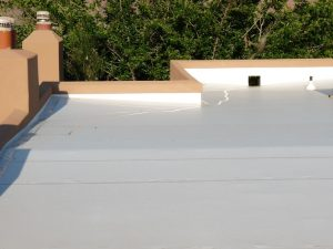 image of PVC TPO roof top